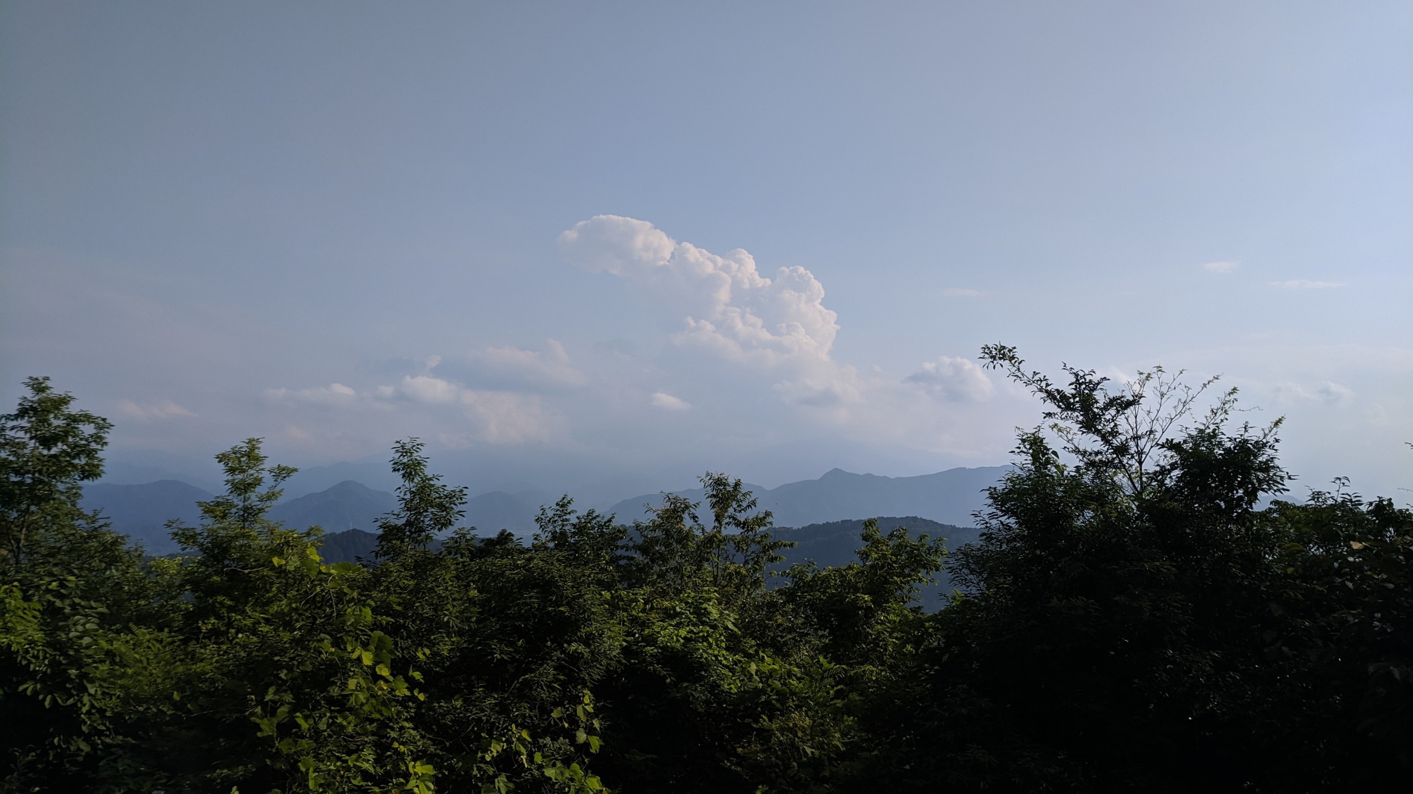 The view from the top of Mount Takao
